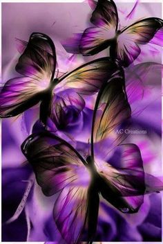So delicate, and beautiful! Purple Wallpaper, Butterfly Wallpaper, Love Wallpaper, Wallpaper Backgrounds, Purple Butterfly, Butterfly Flowers, Beautiful Butterflies, Beautiful Roses, Butterfly Pictures