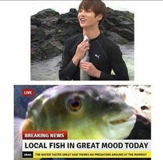 soy el pescado