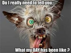 Some days you just do not want to ask!!!!