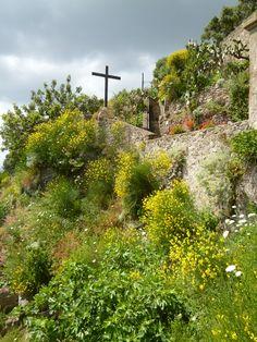 Castello Aragonese, Isola Ischia Italia (Maggio)