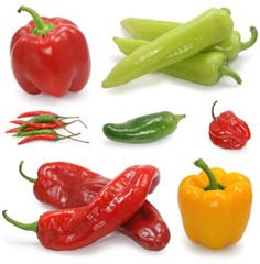 It's a Pepper Party. Are there tricks to growing peppers? What is the difference between a Jalapeno and a Habanero? What is the hottest pepper I can grow in my garden? Can peppers be grown in a container?