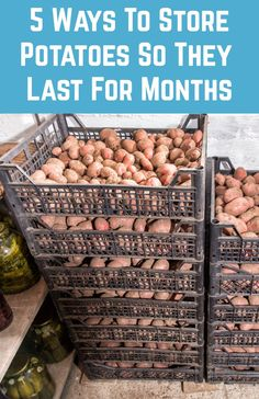 5 Ways To Store Potatoes So They Last For Months - Whether you've grown an abundance of potatoes, or you've got too excited at the farmers' mark - Canning Food Preservation, Preserving Food, How To Store Potatoes, Can You Freeze Potatoes, Freezing Potatoes, Storing Potatoes, Storing Onions, Canned Food Storage, Canning Jar Storage