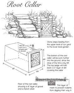 Stone Root Cellar Plans
