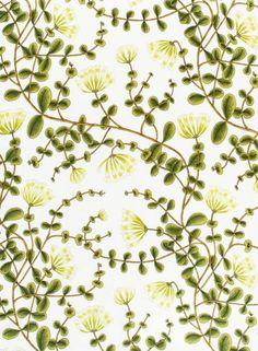 Kuusama-puuvilla (valkoinen, vihreä)MARIMEKKO