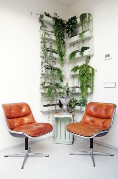 Planten muur