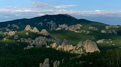 President Grover Cleveland established the Black Hills National Forest in 1897 as the Black Hills Forest Reserve. With many trails to hike and overlooks to view, there are plenty of adventures to be had. Get your Tail on the Trail SD!