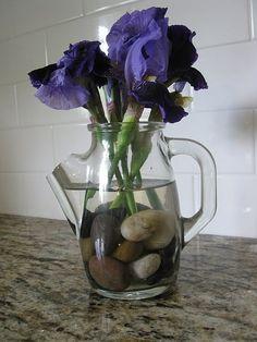 Vase with rocks