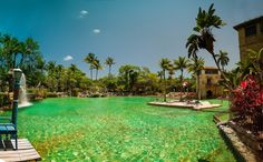 13. There has to be a wish-granting fish in the enchanted waters of the Venetian Pool in Coral Gables.