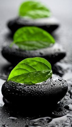 zen stones..un peu de zen attitude ....