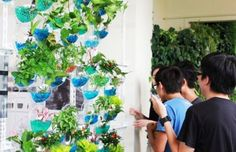 MisoSoupDesign's Invisible Farm is a Vertical Garden Inspired by a Traditional Taiwanese Window Cover;  maybe use soda bottles and the marbles from the wedding!