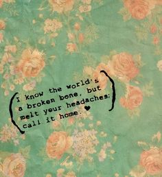 Panic! At The Disco quote- from Northern Downpour.