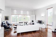 Elegant scandinavian living room design