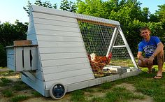 A-frame chicken tractor, nest box on the back