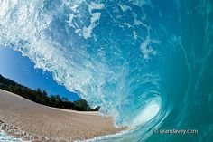 A water view of inside a tubing wave at keiki beach, on the north shore of Oahu, Hawaii  by Sean Davey Photography