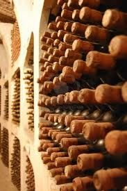 old wine bottles laying in winery