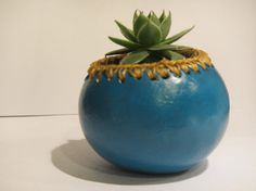 Teal gourd planter with Succulent Hens