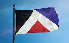 american flag pantone