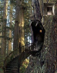 Tree house @Sabrina Majeed Waletzko Lynae. Photo shop but cool nonetheless.
