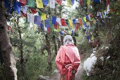Dalai Lama Temple, Dharamsala Photo by Agata G. -- National Geographic Your Shot