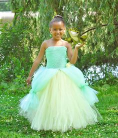 Newborn - Size 12 Princess and The Frog Tiana Inspired Tutu Dress