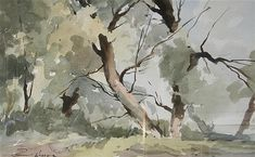 <b>Edward Wesson (1910-1983)</b> <br /> watercolour, <br /> Study of trees, <br /> signed, <br /> <i>12.5 x 20in.</i>