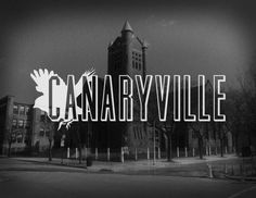 "Canaryville has historically been a predominantly Irish-American neighborhood. While the origin of the name is somewhat disputed, it is believed to have come from one of two sources. Some feel that the name has been derived from the legions of sparrows who populated the area at the end of the 19th C., feeding off stockyard refuse and grain from railroad cars, while others argue that it came from the name given to the  rough  youths, called ""wild canaries,"" who were members of the local…"