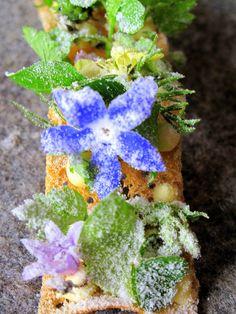 By Chef René Redzepi at Noma Restaurant, Copenhagen.