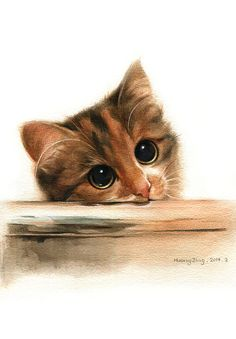 Huang Jing Pretty Cats, Cute Cats, Cat Posters, Cat Wallpaper, Watercolor Animals, Art Challenge, Cat Drawing, Crazy Cats, Animal Drawings