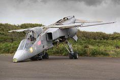 Amid the stark, windswept beauty of Cornwall's Lizard Peninsula lies Predannack Airfield, where an assortment of derelict aircraft hulks, including SEPECAT Jaguar
