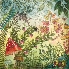 Take a peek at this great artwork on Johanna Basford's Colouring Gallery! Jungle Drawing, Karen Valentine, Enchanted Forest Coloring Book, Johanna Basford Secret Garden, Johanna Basford Coloring Book, Wonder Book, Forest Creatures, Chalk Pastels, Cool Art