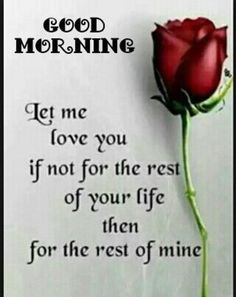 """Good Morning Quotes Love Sayings Good Morning Let me love You, Love It Morning Quotes about love messages """"Good morning. Let me love you if not for the rest Love Quotes For Him, Great Quotes, Me Quotes, Inspirational Quotes, Qoutes, Quotes Images, Motivational, Brainy Quotes, Romance Quotes"""