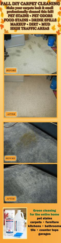 diy carpet cleaning solution machine
