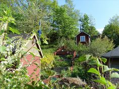 Swedish Garden 2 by Leilalovesflowers, via Flickr