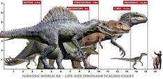 T Rex Jurassic Park, Jurassic World Dinosaurs, Jurassic Park World, Prehistoric Wildlife, Prehistoric Dinosaurs, Prehistoric Creatures, Jurassic World Characters, Jurassic World Fallen Kingdom, Dinosaur Photo