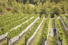 winery-weddings-hawkes-bay-nz