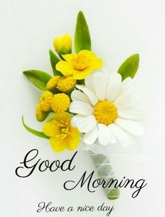 New HD Collection Free Good Morning Pics , Good Morning Wallpaper , Good Morning Photo Pics Pictures Free Download & Share . Good Morning India, Very Good Morning Images, Good Morning Roses, Good Morning Images Flowers, Good Morning Images Download, Good Morning Picture, Good Night Image, Morning Pictures, Beautiful Morning