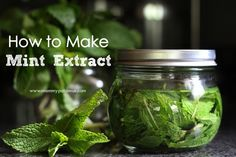 Homemade Mint Extract Recipe :: Using up CSA mint!  I think this will be fun for holiday peppermint bark.