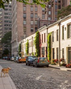 Hidden NYC – Secret New York City Spots and Attractions | The Official Guide to New York City