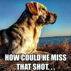 I know that's what my dog thinks when I miss
