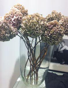 Beautiful dried flowers - simple display