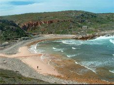Whale Trail | 55 km | De Hoop SA Hiking, Beach, Water, Outdoor, Walks, Gripe Water, Outdoors, The Beach, Beaches