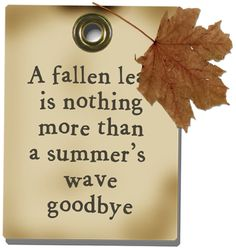 """A fallen leaf is nothing more than a summer's wave goodbye."" ♫  ♫ Fluttering autumn leaves . . .♫  ♫ … ღɱɧღ  ❤️ The Heartbook"
