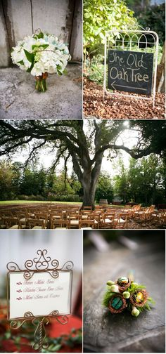 Backyard Sacramento Wedding by 2 Chic Events & Design There Wedding Will be Under an Oak Tree and this is Kind of the Laid Back Style they Want<br> Backyard Sacramento Wedding by 2 Chic Events & Design Wedding Ceremony Ideas, Wedding Games For Guests, Wedding Reception Seating, Wedding Guest List, Wedding Table, Outdoor Ceremony, Rose Petals Wedding, Wedding Flowers, Garden Wedding