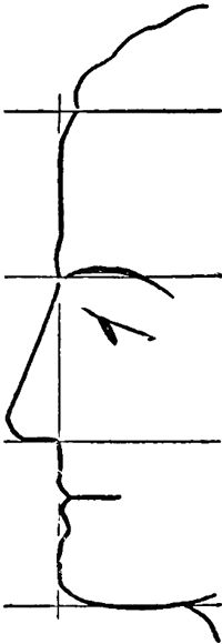 How do draw a face in profile