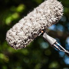Vorsicht vor ungezügelten Emotionen beim Medienauftritt