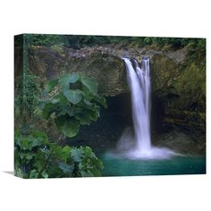Global Gallery Rainbow Falls Cascading into Pool Big Island Hawaii Wall Art - GCS-396391-1216-142