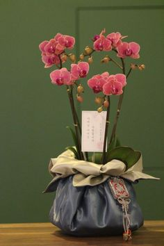 Special wrapping Orchid