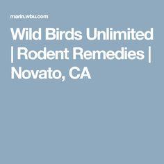 Wild Birds Unlimited   Rodent Remedies   Novato, CA