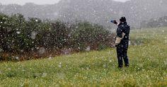 23.jul.2013 - Campos de camomila no limite dos municípios de Curitiba e Fazenda Rio Grande tiveram neve na manhã desta terça-feira (23). A onda de frio que atinge a região Sul do país fez nevar nas Regiões Metropolitanas de Curitiba e Florianópolis. Há 38 anos não nevava em Curitiba e região