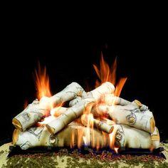 Best Gas Fireplace Logs - Birch